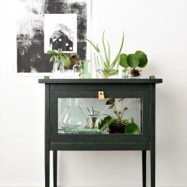 Planten in water en glas
