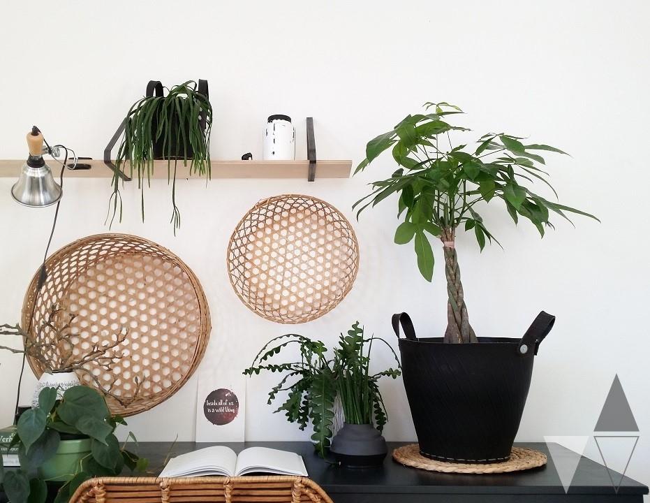 Mooi wat planten doen - Lisanne van de Klift.3